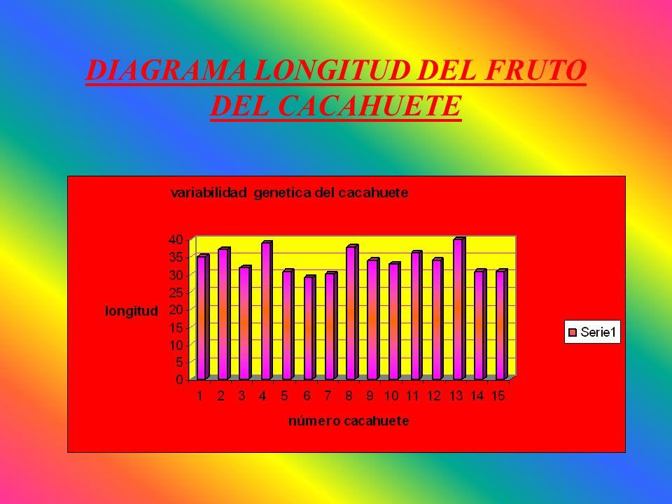 VARIABILIDAD GENETICA Estudio aplicado a un vegetal Análisis de la longitud del fruto del cacahuete