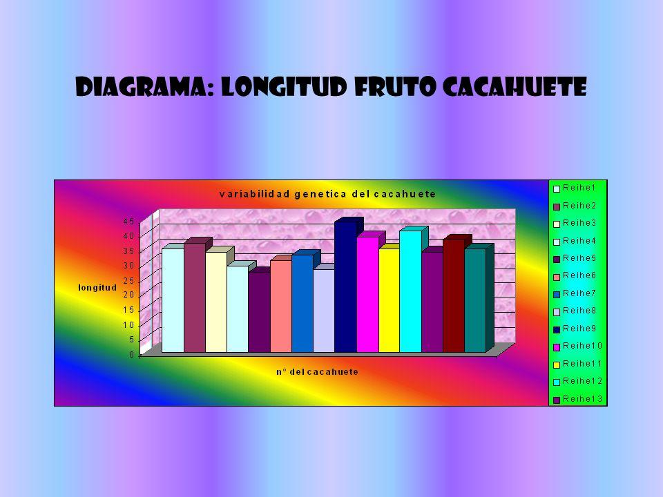 VARIABILIDAD GENETICA Estudio aplicado a un vegetal Analisis de la longitud del fruto del cacahuete