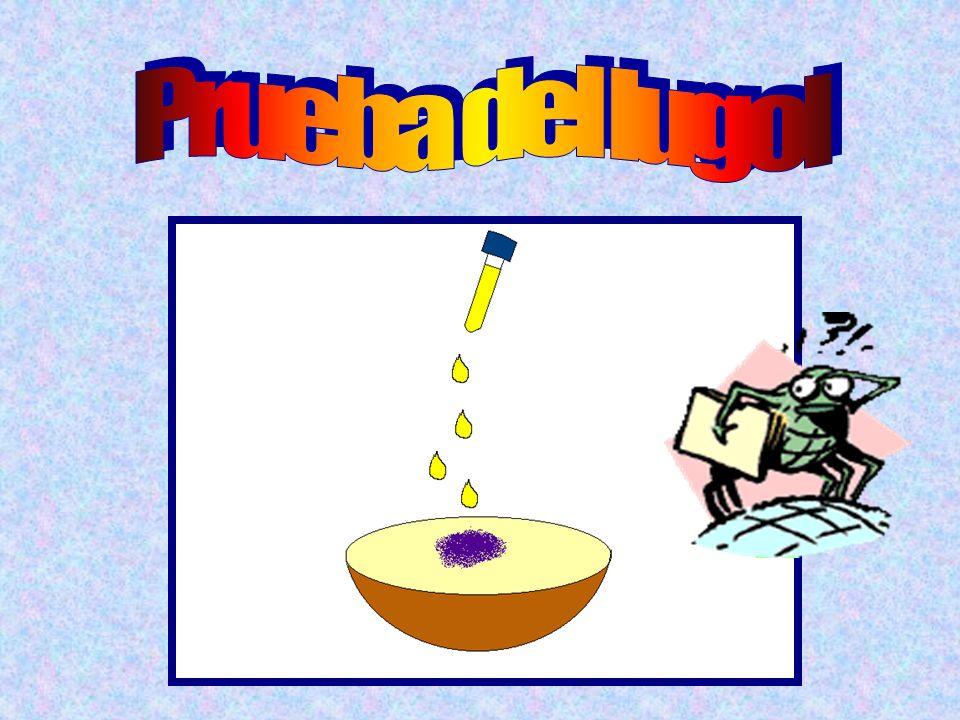 Azúcares o glúcidos La patata, la harina... Son alimentos que contienen gran cantidad de almidón. El almidón es un azúcar formado por muchas glucosas.