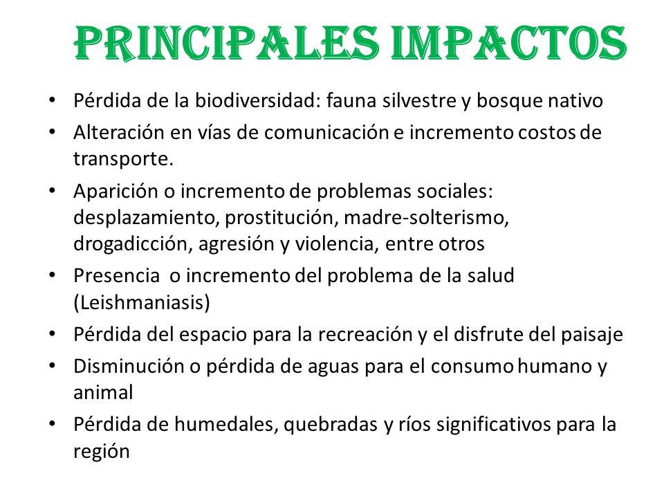 PRINCIPALES IMPACTOS Pérdida de la biodiversidad: fauna silvestre y bosque nativo Alteración en vías de comunicación e incremento costos de transporte