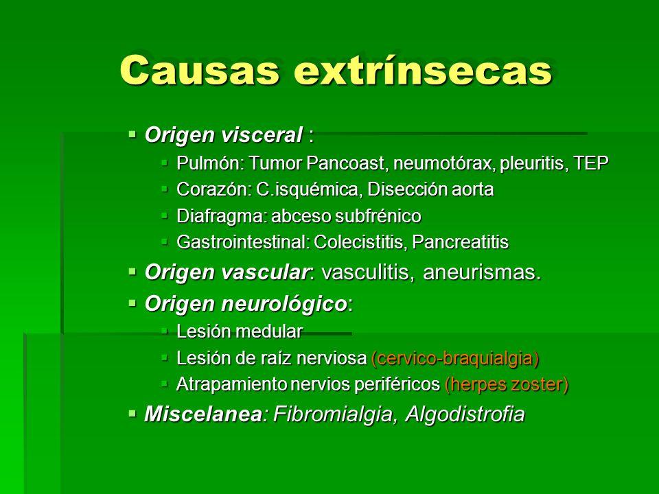 Causas extrínsecas Origen visceral : Origen visceral : Pulmón: Tumor Pancoast, neumotórax, pleuritis, TEP Pulmón: Tumor Pancoast, neumotórax, pleuriti