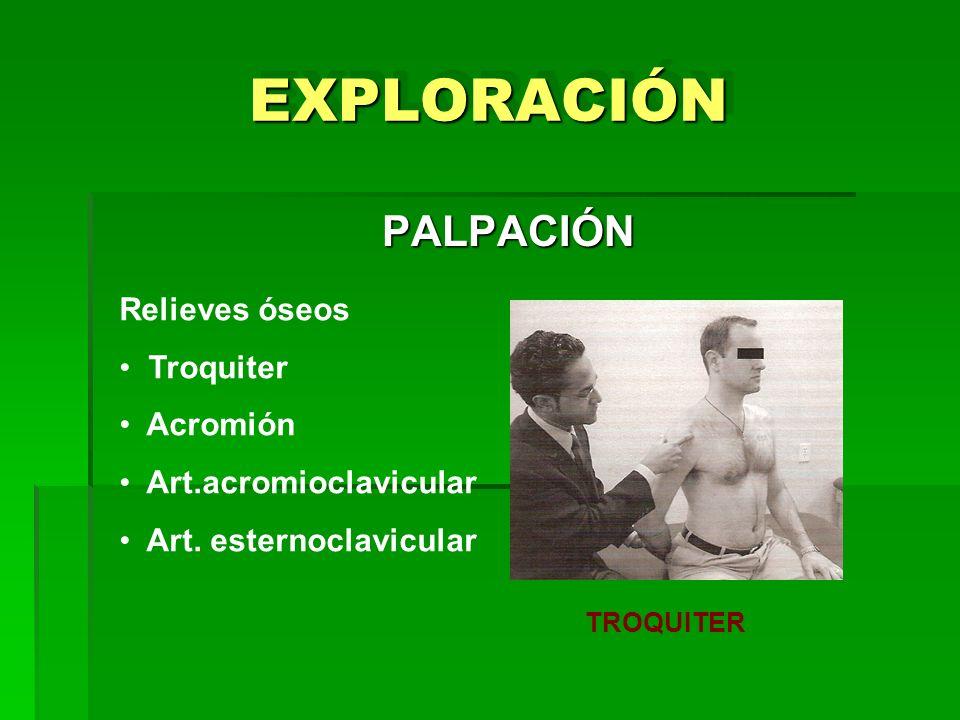 EXPLORACIÓNEXPLORACIÓN PALPACIÓN TROQUITER Relieves óseos Troquiter Acromión Art.acromioclavicular Art. esternoclavicular