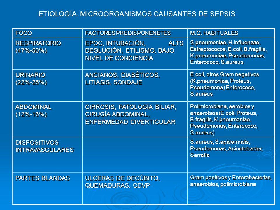 FOCO FACTORES PREDISPONENETES M.O. HABITUALES RESPIRATORIO (47%-50%) EPOC, INTUBACIÓN, ALTS DEGLUCIÓN, ETILISMO, BAJO NIVEL DE CONCIENCIA S.pneumoniae