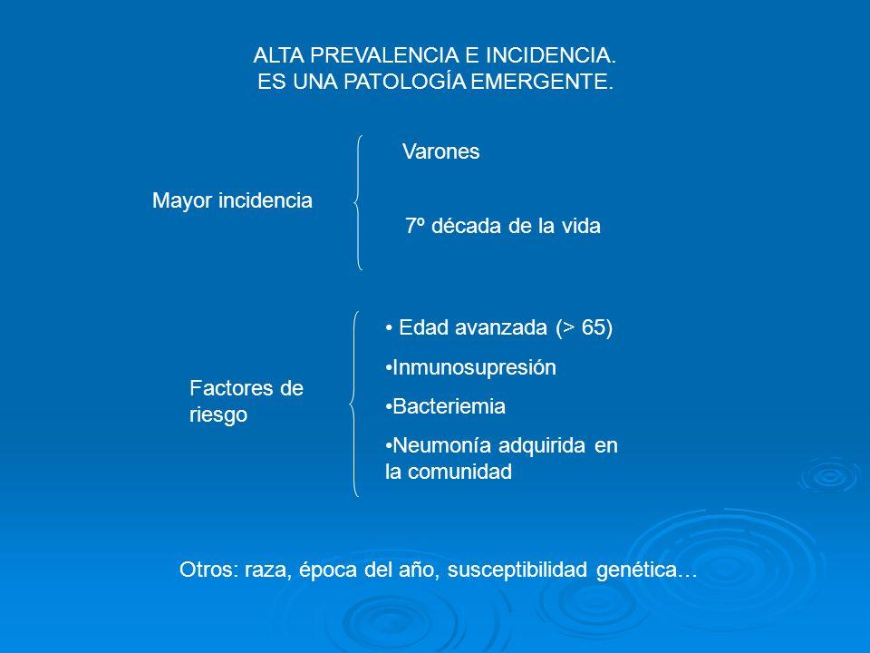 ALTA PREVALENCIA E INCIDENCIA. ES UNA PATOLOGÍA EMERGENTE. 7º década de la vida Mayor incidencia Varones Factores de riesgo Edad avanzada (> 65) Inmun