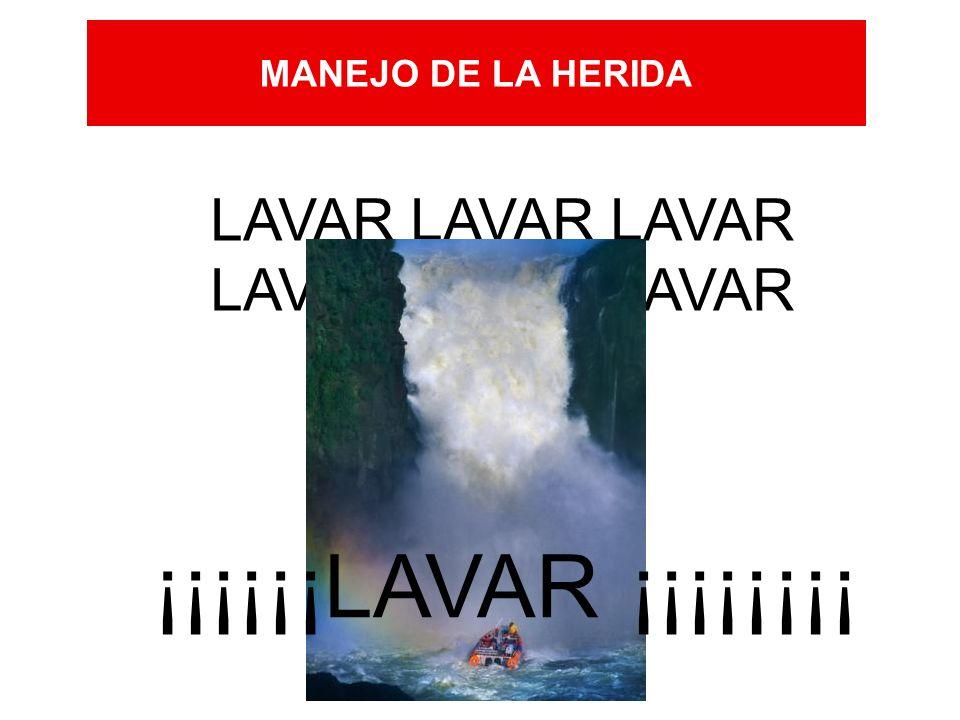 MANEJO DE LA HERIDA LAVAR LAVAR LAVAR ¡¡¡¡¡¡LAVAR ¡¡¡¡¡¡¡¡