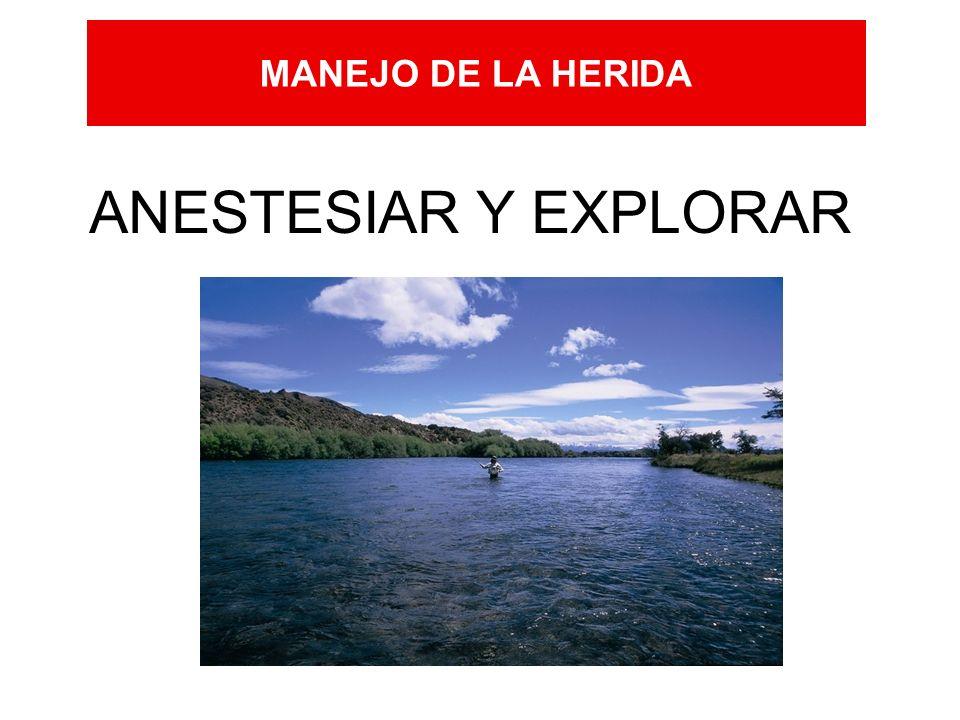 MANEJO DE LA HERIDA ANESTESIAR Y EXPLORAR