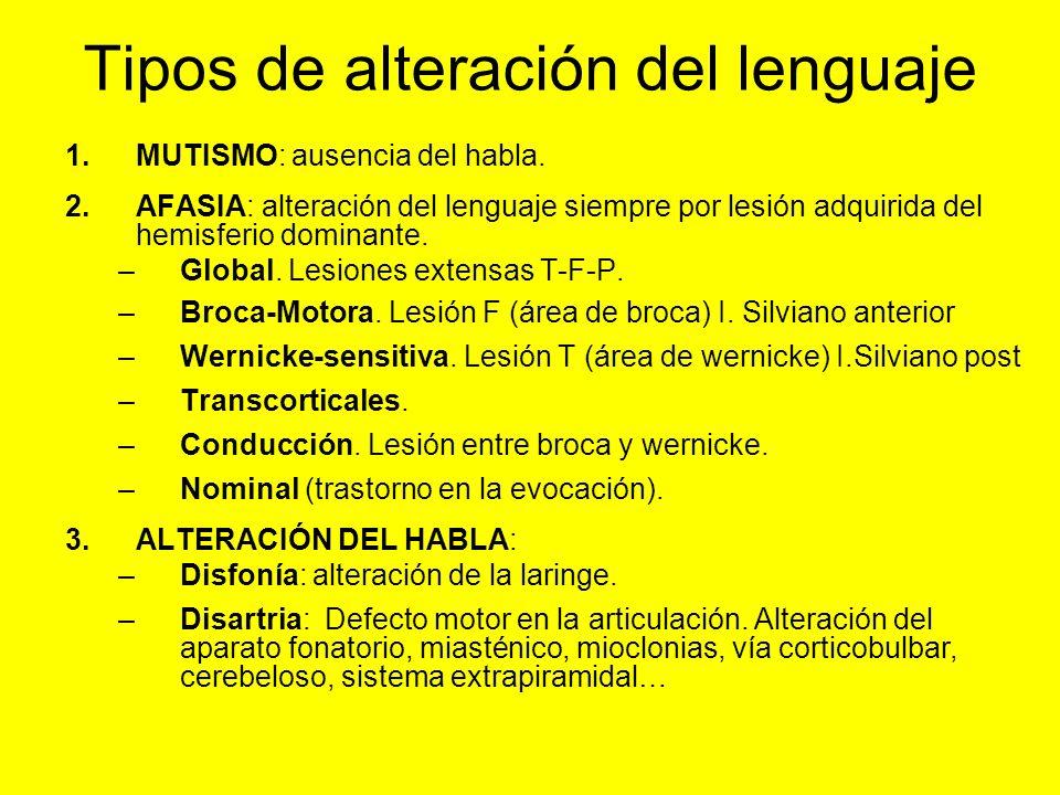 Tipos de alteración del lenguaje 1.MUTISMO: ausencia del habla. 2.AFASIA: alteración del lenguaje siempre por lesión adquirida del hemisferio dominant