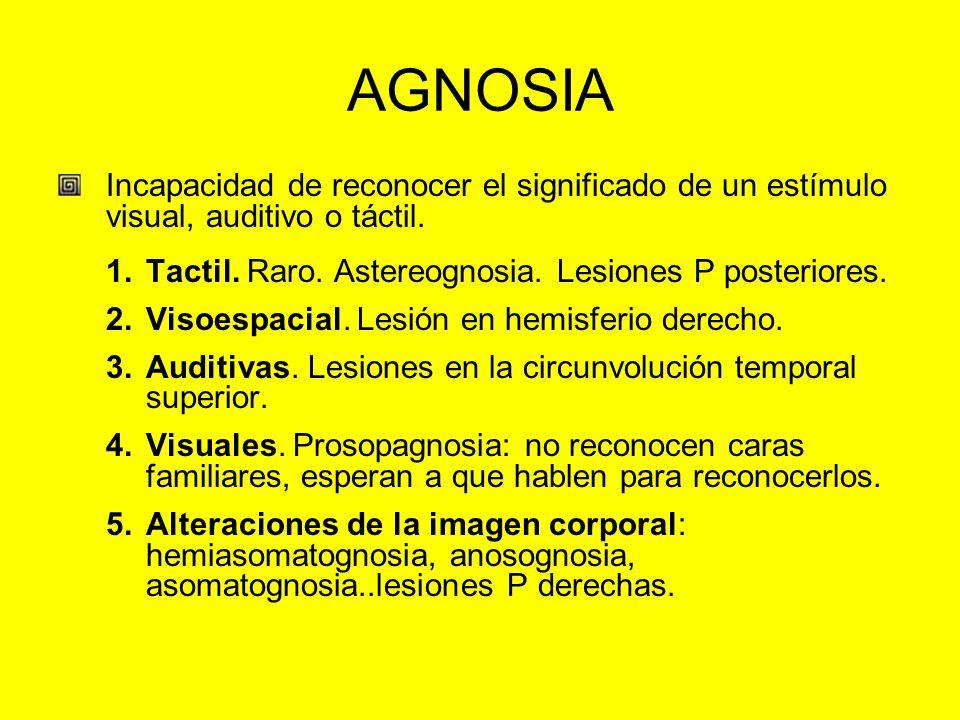 AGNOSIA Incapacidad de reconocer el significado de un estímulo visual, auditivo o táctil. 1.Tactil. Raro. Astereognosia. Lesiones P posteriores. 2.Vis