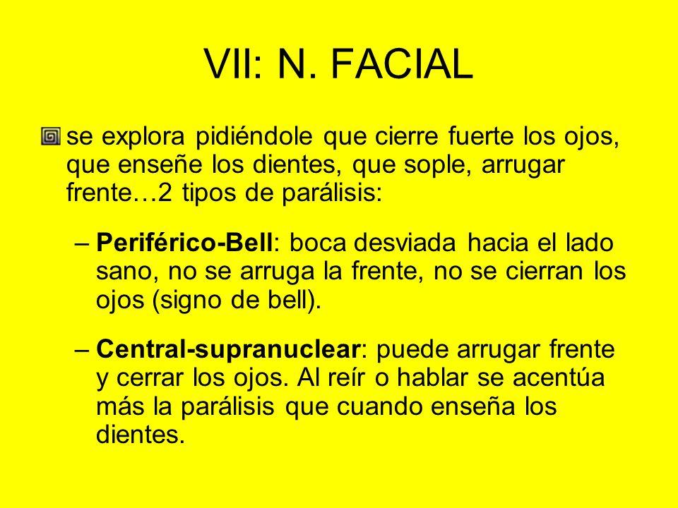 VII: N. FACIAL se explora pidiéndole que cierre fuerte los ojos, que enseñe los dientes, que sople, arrugar frente…2 tipos de parálisis: –Periférico-B