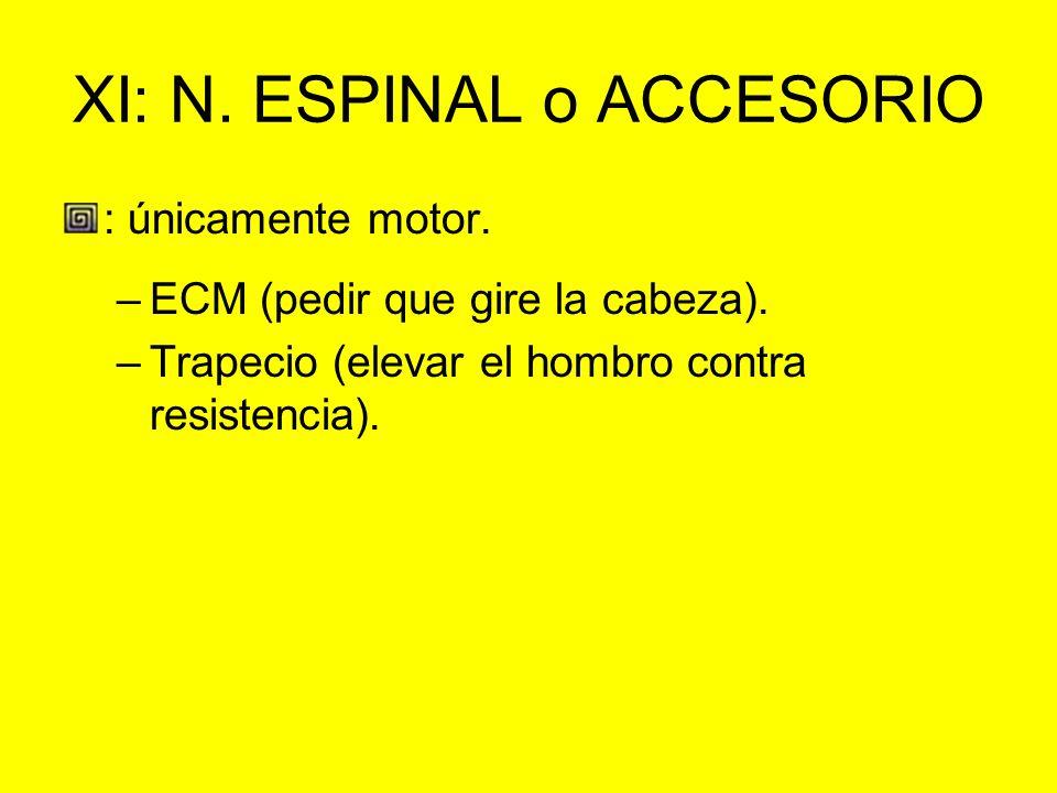 XI: N. ESPINAL o ACCESORIO : únicamente motor. –ECM (pedir que gire la cabeza). –Trapecio (elevar el hombro contra resistencia).