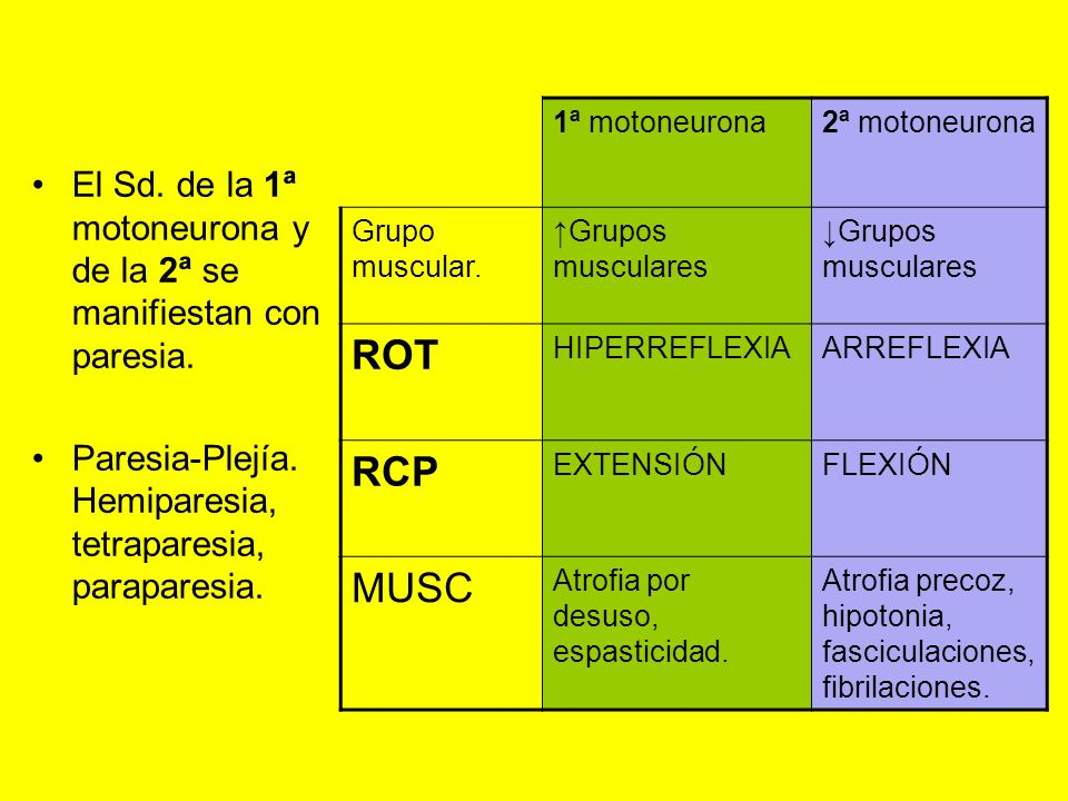 El Sd. de la 1ª motoneurona y de la 2ª se manifiestan con paresia. Paresia-Plejía. Hemiparesia, tetraparesia, paraparesia. 1ª motoneurona2ª motoneuron