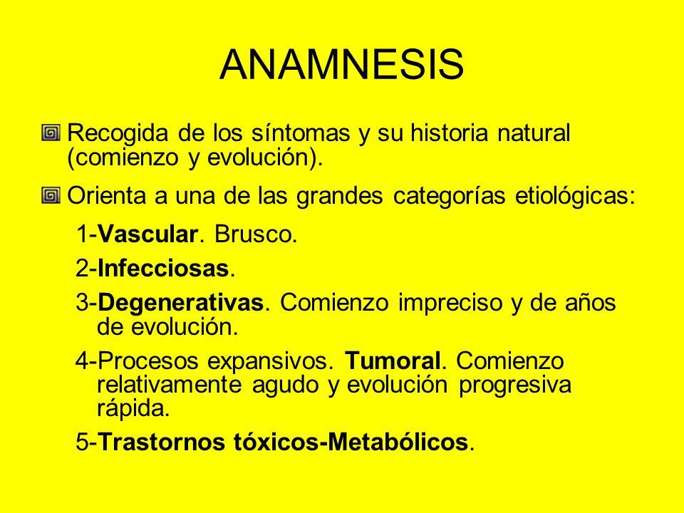 ANAMNESIS Recogida de los síntomas y su historia natural (comienzo y evolución). Orienta a una de las grandes categorías etiológicas: 1-Vascular. Brus