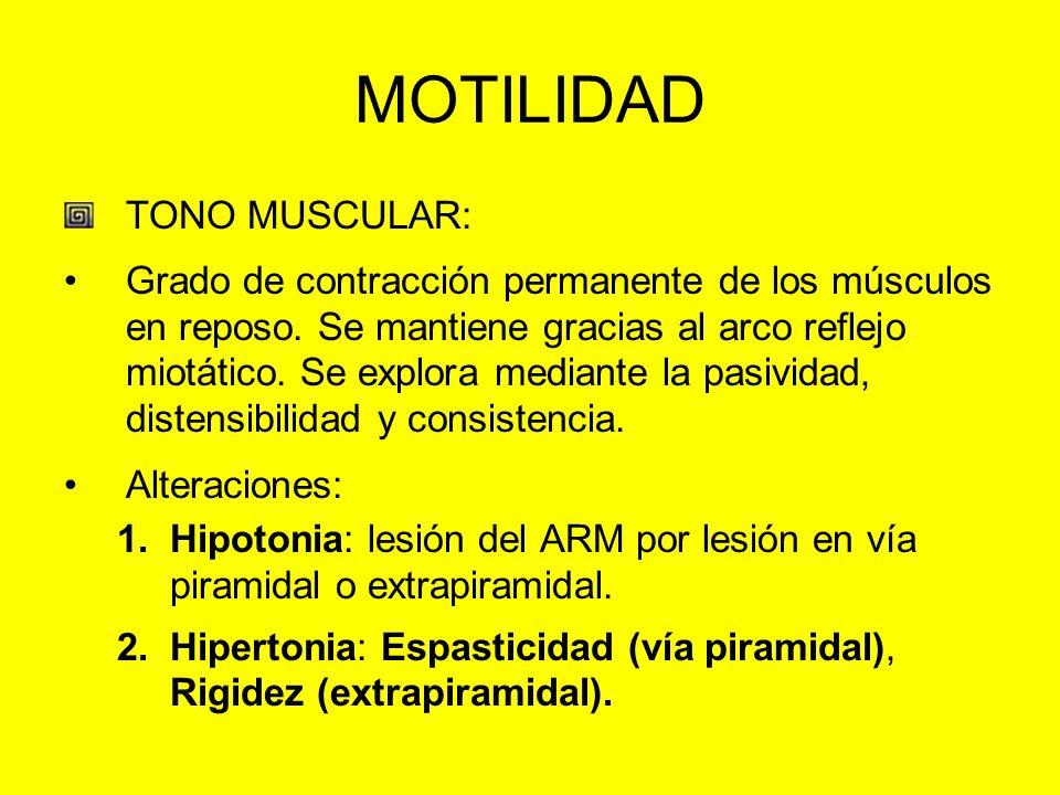 MOTILIDAD TONO MUSCULAR: Grado de contracción permanente de los músculos en reposo. Se mantiene gracias al arco reflejo miotático. Se explora mediante