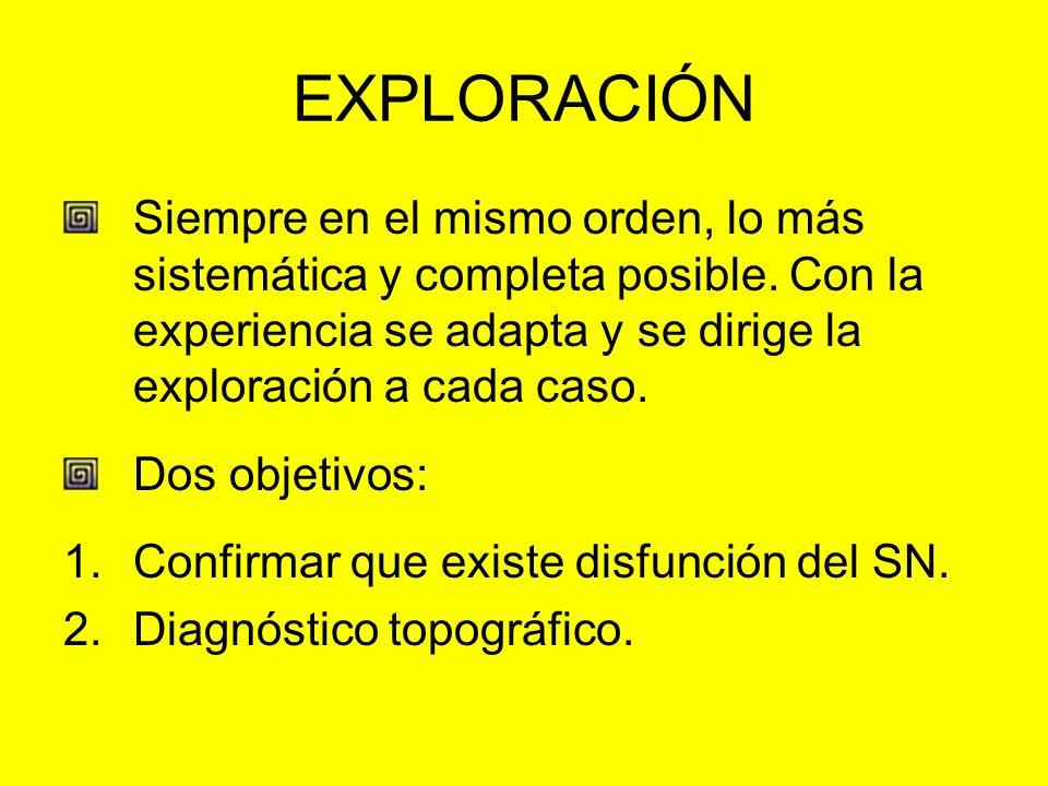 EXPLORACIÓN Siempre en el mismo orden, lo más sistemática y completa posible. Con la experiencia se adapta y se dirige la exploración a cada caso. Dos