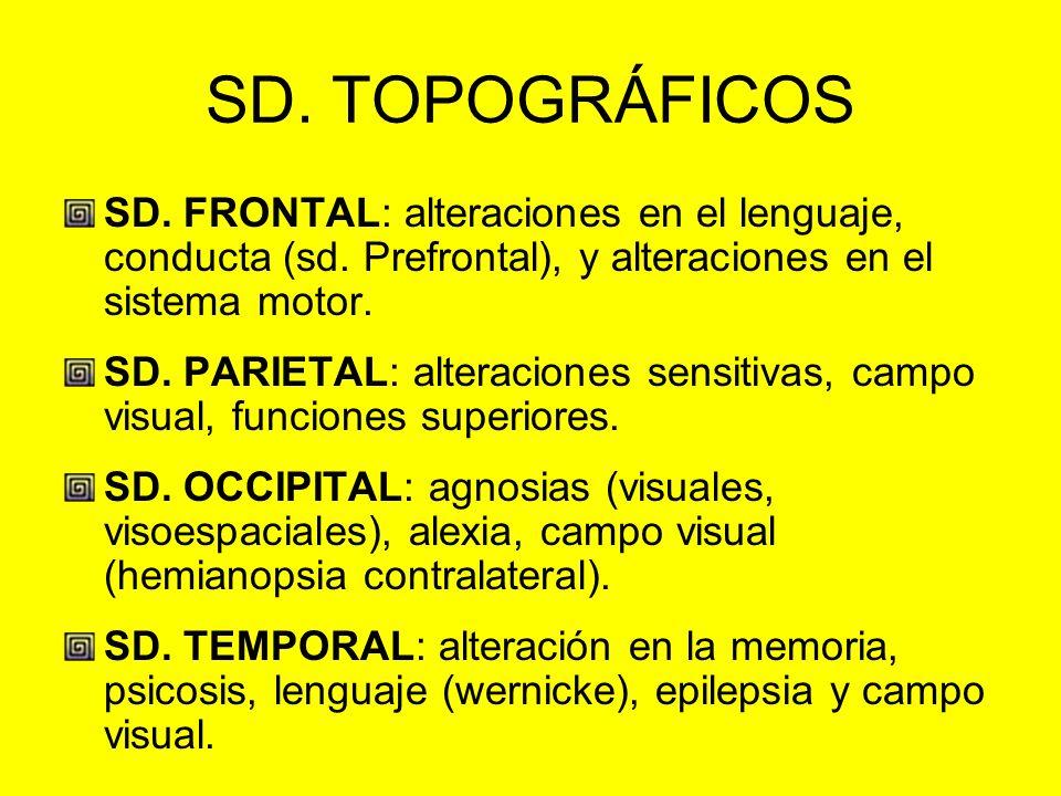 SD. TOPOGRÁFICOS SD. FRONTAL: alteraciones en el lenguaje, conducta (sd. Prefrontal), y alteraciones en el sistema motor. SD. PARIETAL: alteraciones s