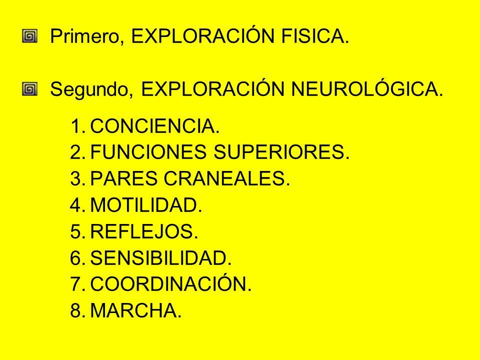 Primero, EXPLORACIÓN FISICA. Segundo, EXPLORACIÓN NEUROLÓGICA. 1.CONCIENCIA. 2.FUNCIONES SUPERIORES. 3.PARES CRANEALES. 4.MOTILIDAD. 5.REFLEJOS. 6.SEN