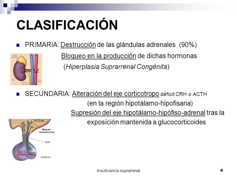 Insuficiencia suprarrenal4 CLASIFICACIÓN PRIMARIA: Destrucción de las glándulas adrenales (90%) Bloqueo en la producción de dichas hormonas (Hiperplasia Suprarrenal Congénita) SECUNDARIA: Alteración del eje corticotropo déficit CRH o ACTH (en la región hipotálamo-hipofisaria) Supresión del eje hipotálamo-hipófiso-adrenal tras la exposición mantenida a glucocorticoides