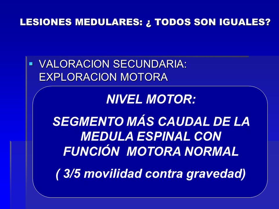 VALORACION SECUNDARIA: EXPLORACION MOTORA VALORACION SECUNDARIA: EXPLORACION MOTORA C4: Diafragma C4: Diafragma C5: Deltoides. Abducción del brazo C5: