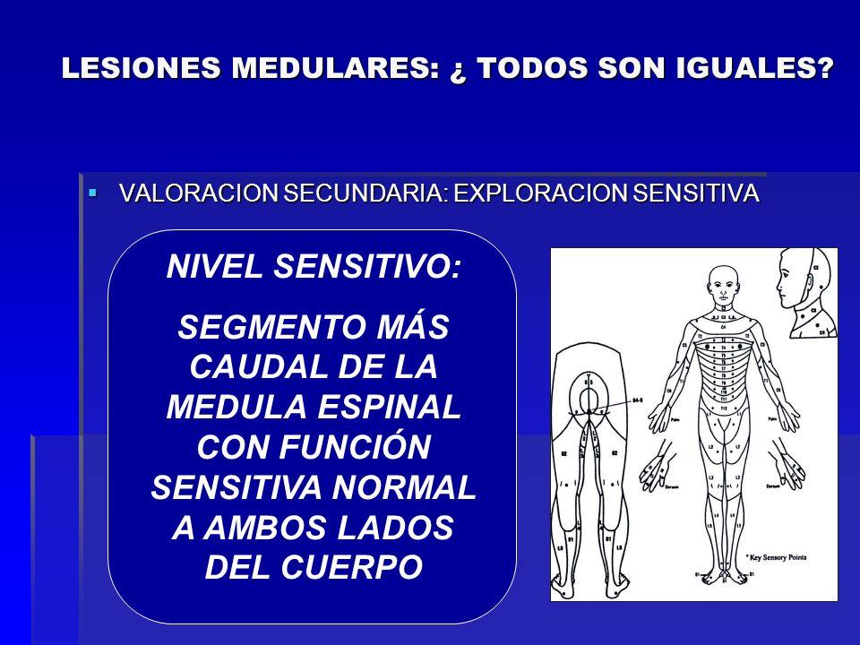 VALORACION SECUNDARIA: EXPLORACION SENSITIVA VALORACION SECUNDARIA: EXPLORACION SENSITIVA C5: Zona superior del deltoides C5: Zona superior del deltoi