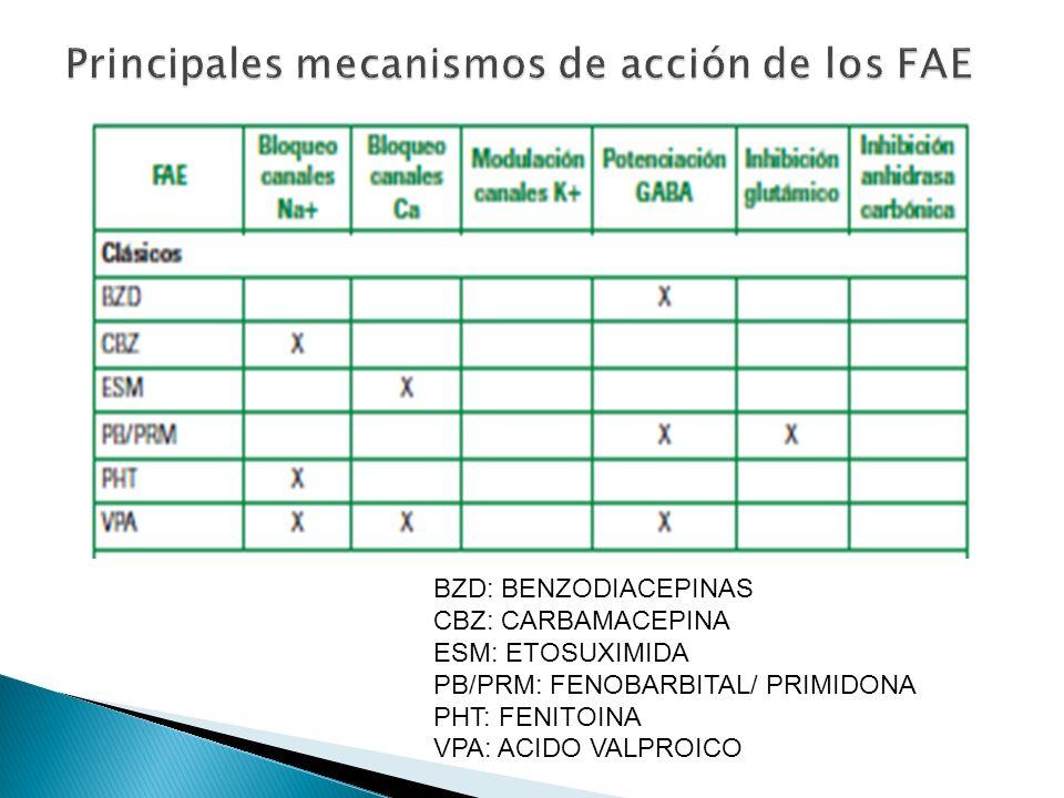BZD: BENZODIACEPINAS CBZ: CARBAMACEPINA ESM: ETOSUXIMIDA PB/PRM: FENOBARBITAL/ PRIMIDONA PHT: FENITOINA VPA: ACIDO VALPROICO