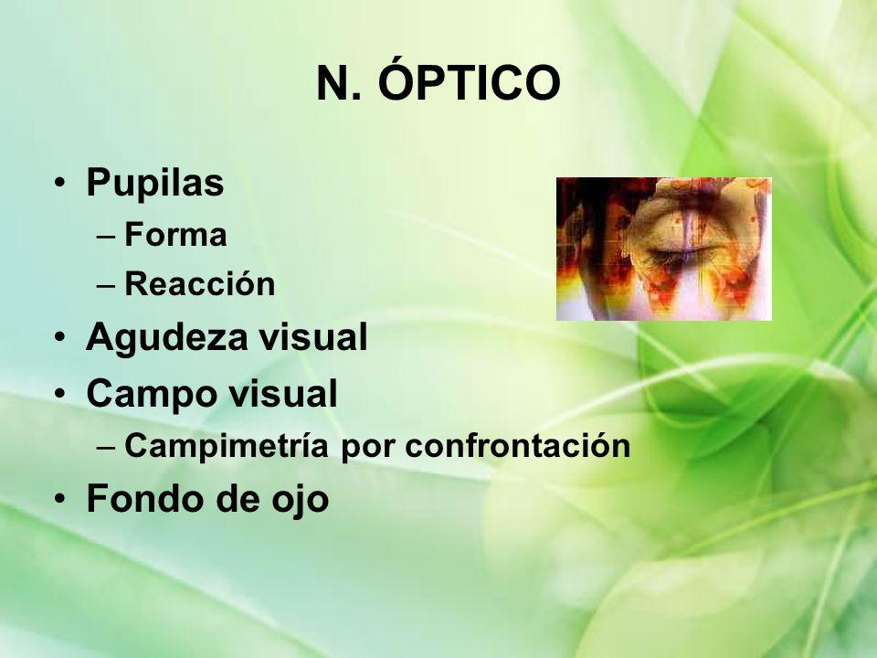 N. ÓPTICO Pupilas –Forma –Reacción Agudeza visual Campo visual –Campimetría por confrontación Fondo de ojo