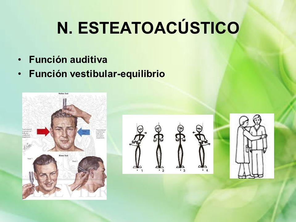 N. ESTEATOACÚSTICO Función auditiva Función vestibular-equilibrio