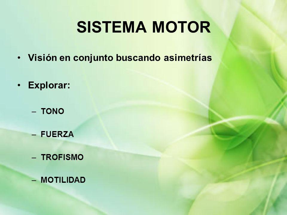 SISTEMA MOTOR Visión en conjunto buscando asimetrías Explorar: –TONO –FUERZA –TROFISMO –MOTILIDAD