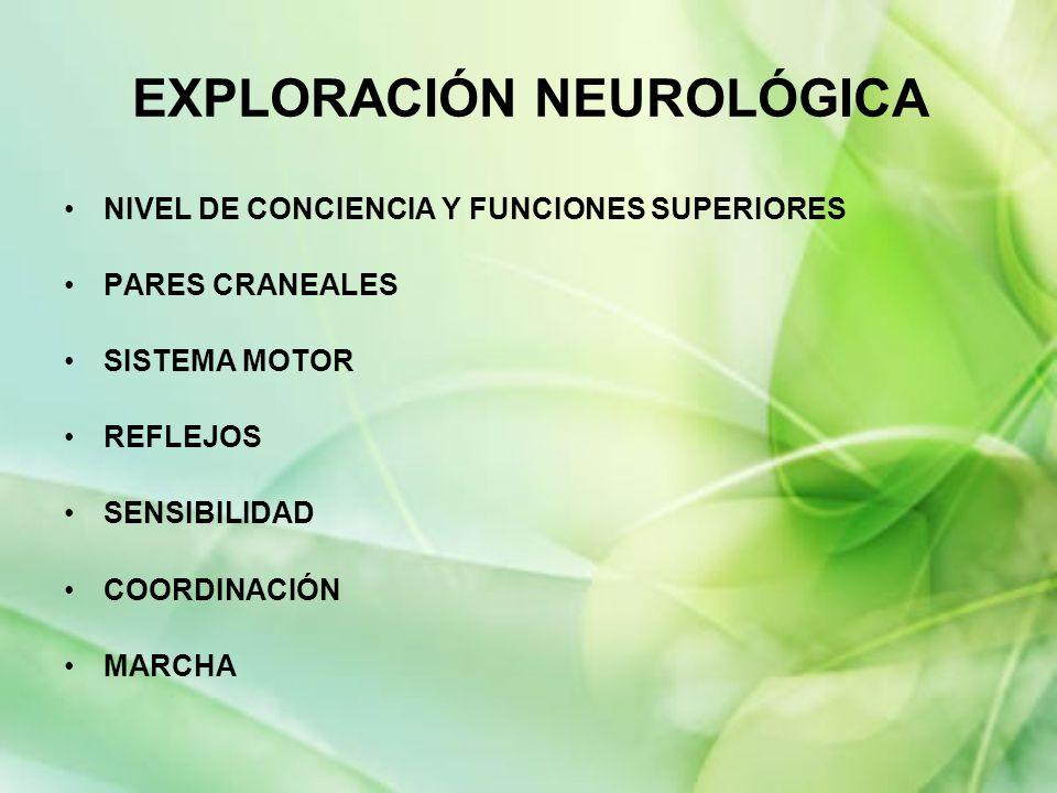 EXPLORACIÓN NEUROLÓGICA NIVEL DE CONCIENCIA Y FUNCIONES SUPERIORES PARES CRANEALES SISTEMA MOTOR REFLEJOS SENSIBILIDAD COORDINACIÓN MARCHA