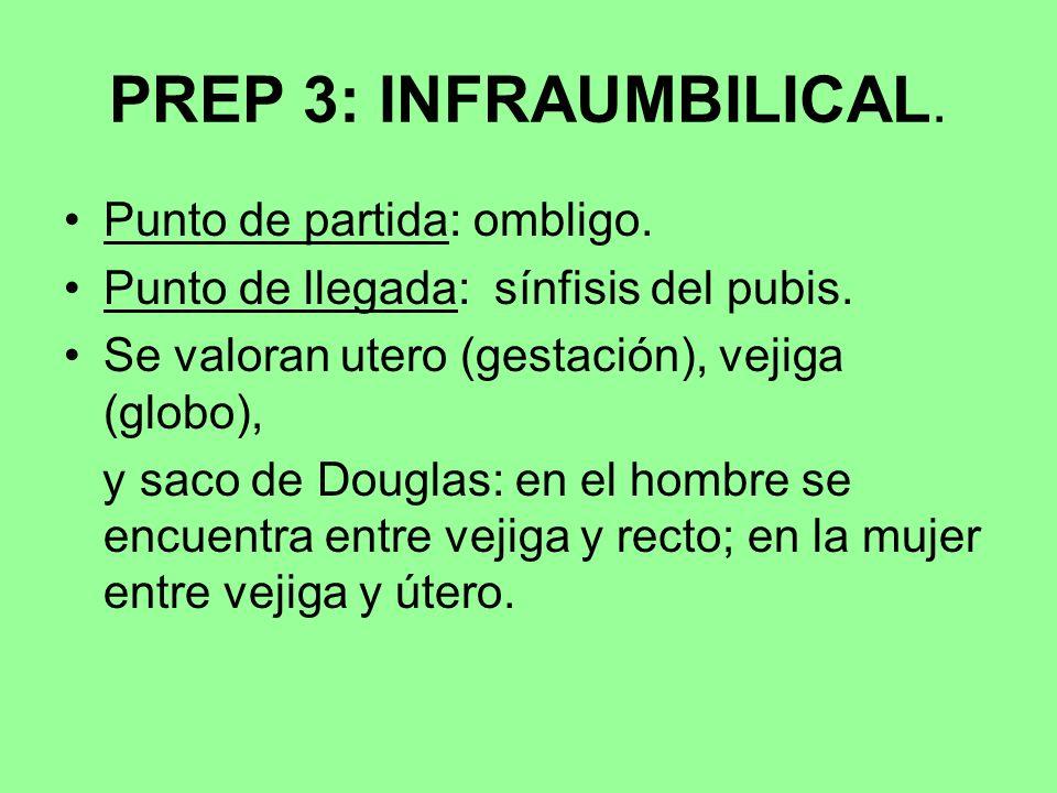 PREP 3: INFRAUMBILICAL. Punto de partida: ombligo. Punto de llegada: sínfisis del pubis. Se valoran utero (gestación), vejiga (globo), y saco de Dougl