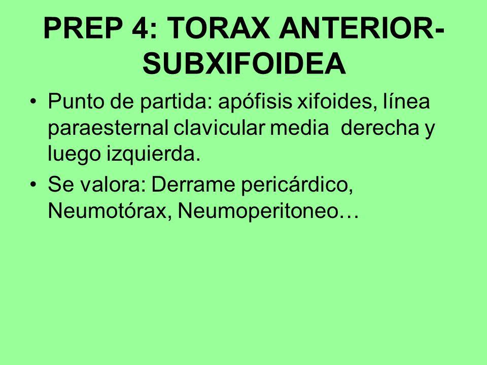 PREP 4: TORAX ANTERIOR- SUBXIFOIDEA Punto de partida: apófisis xifoides, línea paraesternal clavicular media derecha y luego izquierda. Se valora: Der