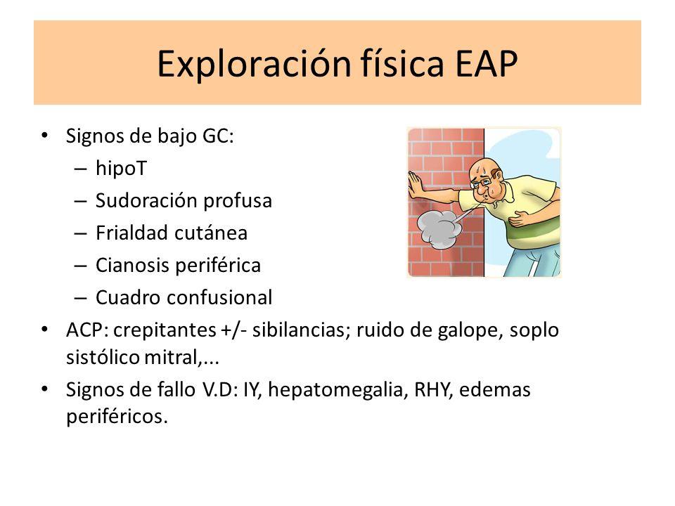 Exploración física EAP Signos de bajo GC: – hipoT – Sudoración profusa – Frialdad cutánea – Cianosis periférica – Cuadro confusional ACP: crepitantes