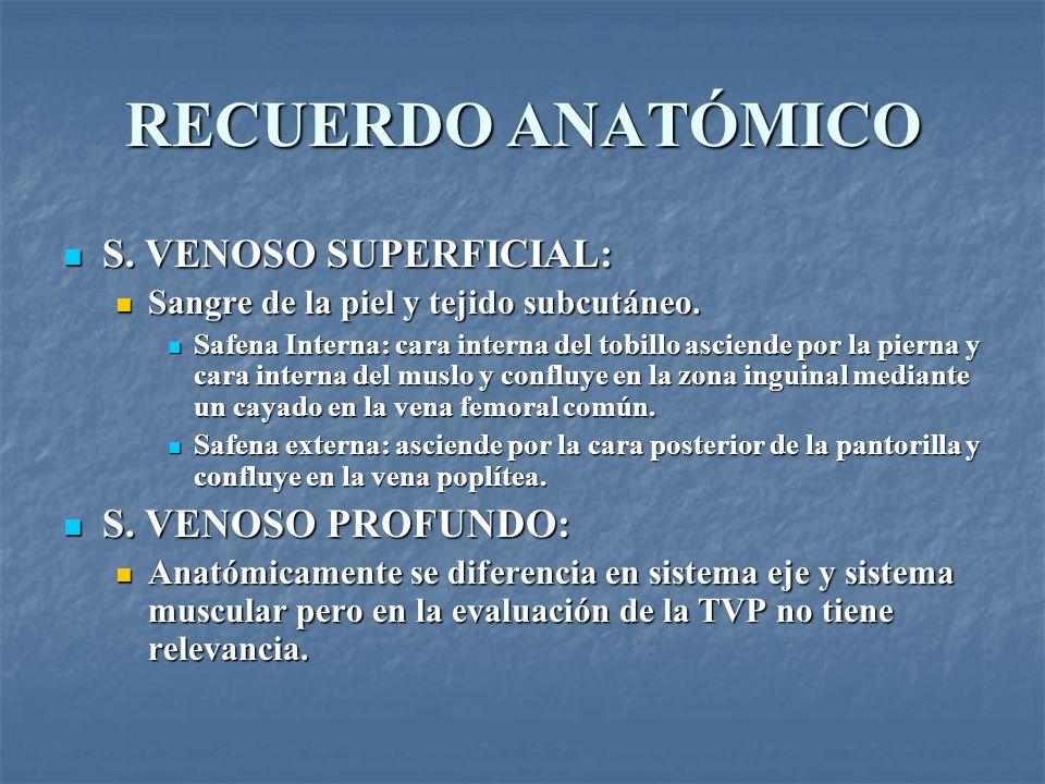 RECUERDO ANATÓMICO S. VENOSO SUPERFICIAL: S. VENOSO SUPERFICIAL: Sangre de la piel y tejido subcutáneo. Sangre de la piel y tejido subcutáneo. Safena