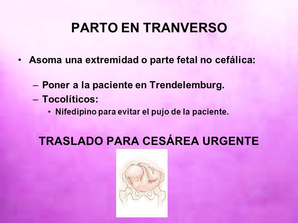 PARTO EN TRANVERSO Asoma una extremidad o parte fetal no cefálica: –Poner a la paciente en Trendelemburg. –Tocolíticos: Nifedipino para evitar el pujo