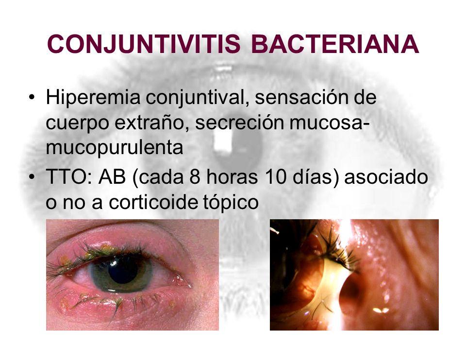 CONJUNTIVITIS BACTERIANA Hiperemia conjuntival, sensación de cuerpo extraño, secreción mucosa- mucopurulenta TTO: AB (cada 8 horas 10 días) asociado o
