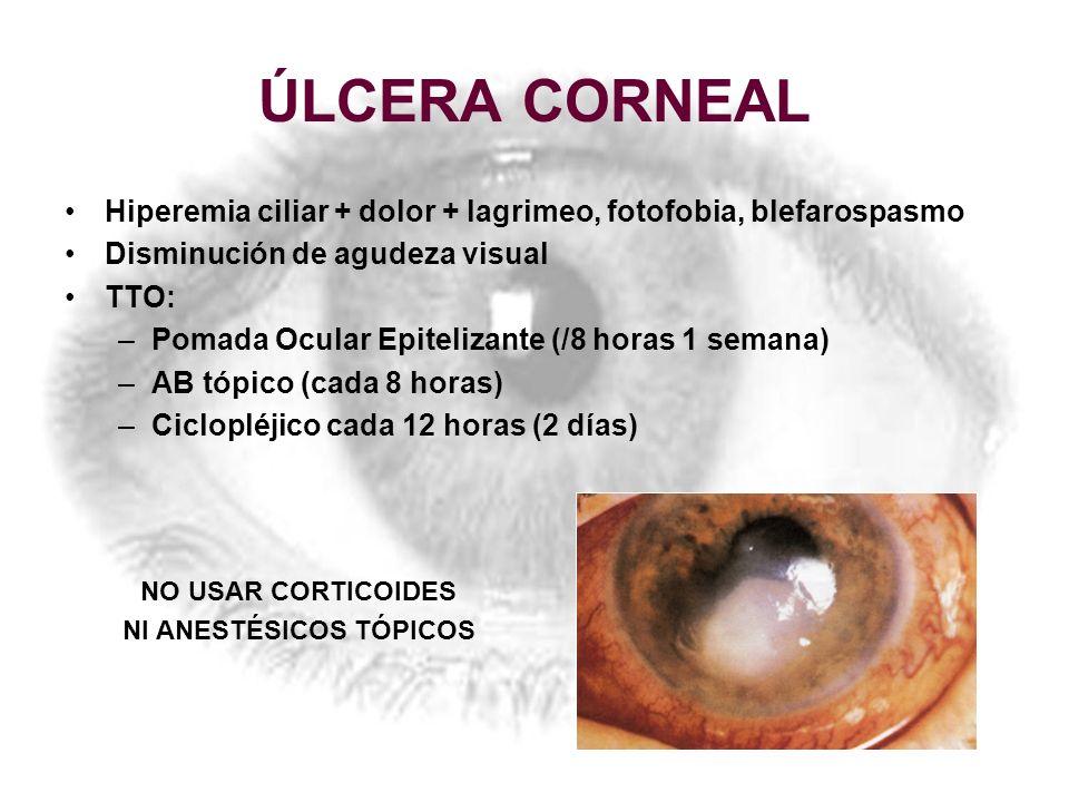 ÚLCERA CORNEAL Hiperemia ciliar + dolor + lagrimeo, fotofobia, blefarospasmo Disminución de agudeza visual TTO: –Pomada Ocular Epitelizante (/8 horas