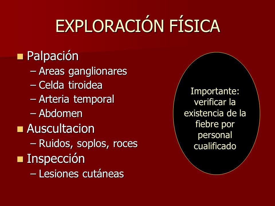 EXPLORACIÓN FÍSICA Palpación Palpación –Areas ganglionares –Celda tiroidea –Arteria temporal –Abdomen Auscultacion Auscultacion –Ruidos, soplos, roces