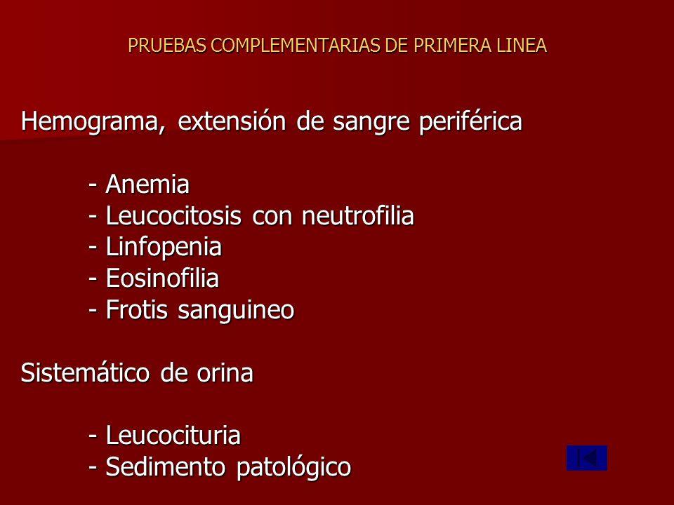 PRUEBAS COMPLEMENTARIAS DE PRIMERA LINEA Hemograma, extensión de sangre periférica - Anemia - Leucocitosis con neutrofilia - Linfopenia - Eosinofilia