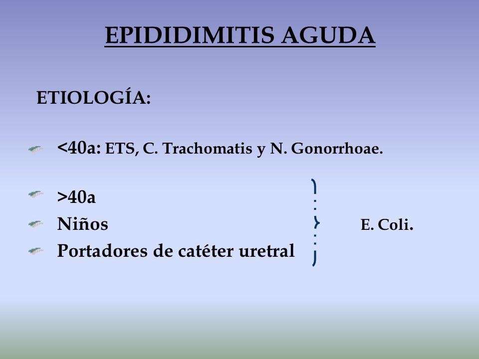 ETIOLOGÍA: <40a: ETS, C. Trachomatis y N. Gonorrhoae. >40a Niños E. Coli. Portadores de catéter uretral EPIDIDIMITIS AGUDA