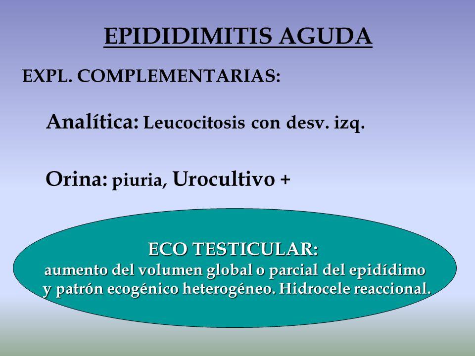 EXPL. COMPLEMENTARIAS: Analítica: Leucocitosis con desv. izq. Orina: piuria, Urocultivo + EPIDIDIMITIS AGUDA ECO TESTICULAR: aumento del volumen globa