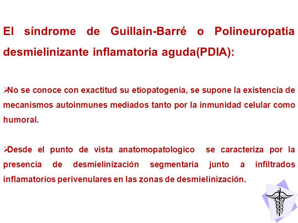 El síndrome de Guillain-Barré o Polineuropatia desmielinizante inflamatoria aguda(PDIA): No se conoce con exactitud su etiopatogenia, se supone la exi