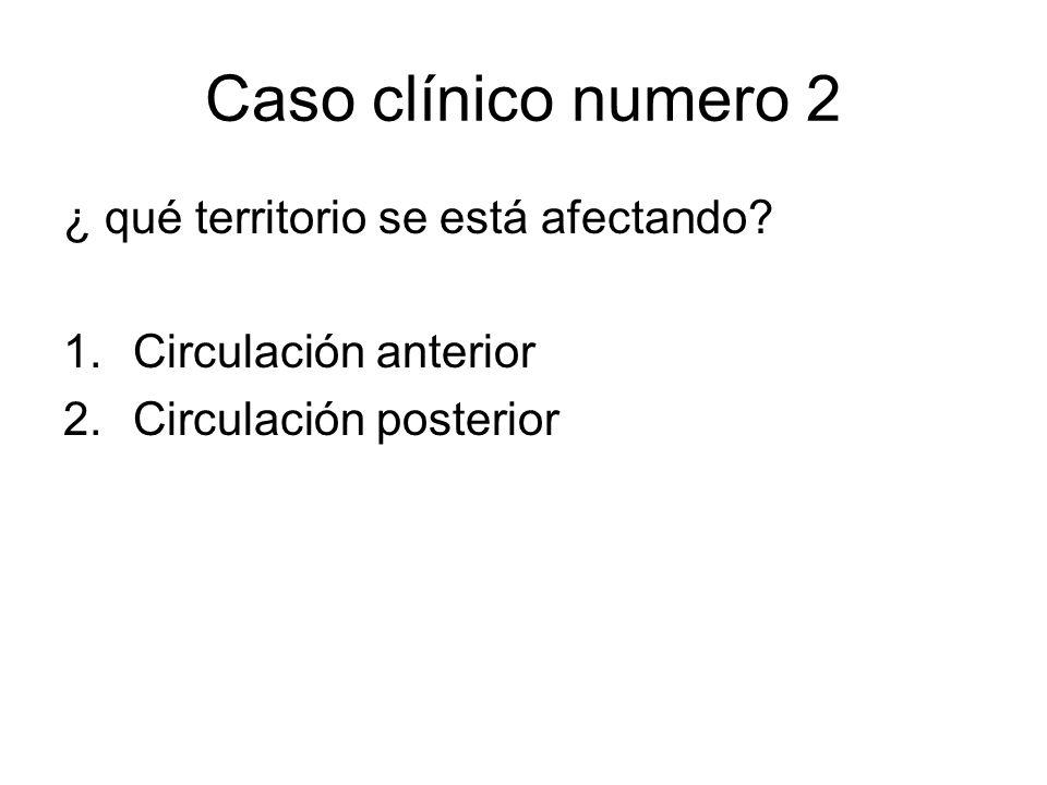 Caso clínico numero 2 ¿ qué territorio se está afectando? 1.Circulación anterior 2.Circulación posterior