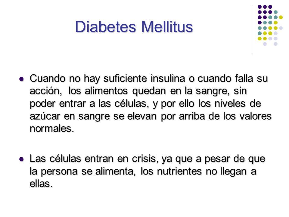 Diabetes Mellitus Cuando no hay suficiente insulina o cuando falla su acción, los alimentos quedan en la sangre, sin poder entrar a las células, y por