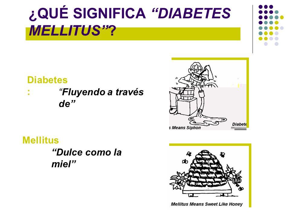 ¿QUÉ SIGNIFICA DIABETES MELLITUS? Diabetes : Mellitus Fluyendo a través de Dulce como la miel