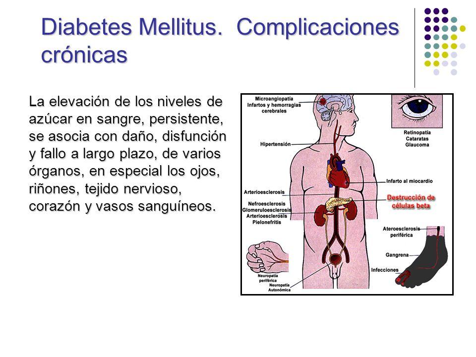 Diabetes Mellitus. Complicaciones crónicas La elevación de los niveles de azúcar en sangre, persistente, se asocia con daño, disfunción y fallo a larg