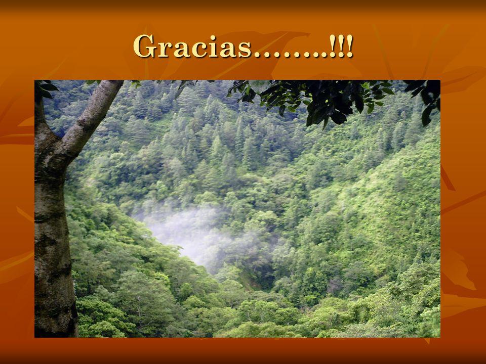 Gracias……..!!!