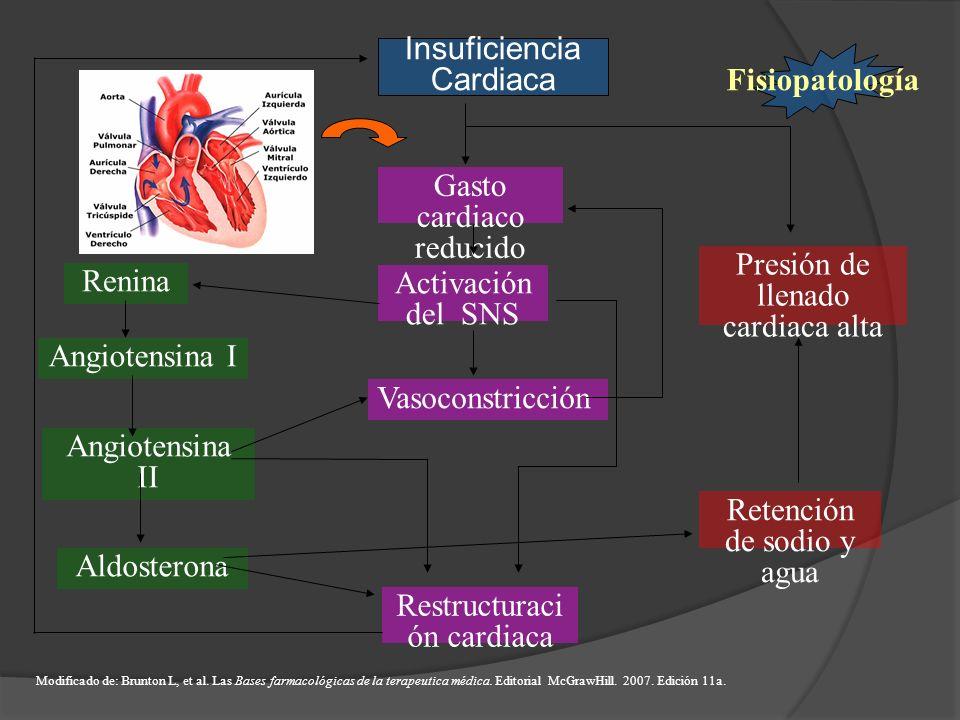 Gasto cardiaco reducido Activación del SNS Vasoconstricción Restructuraci ón cardiaca Presión de llenado cardiaca alta Renina Angiotensina I Angiotens
