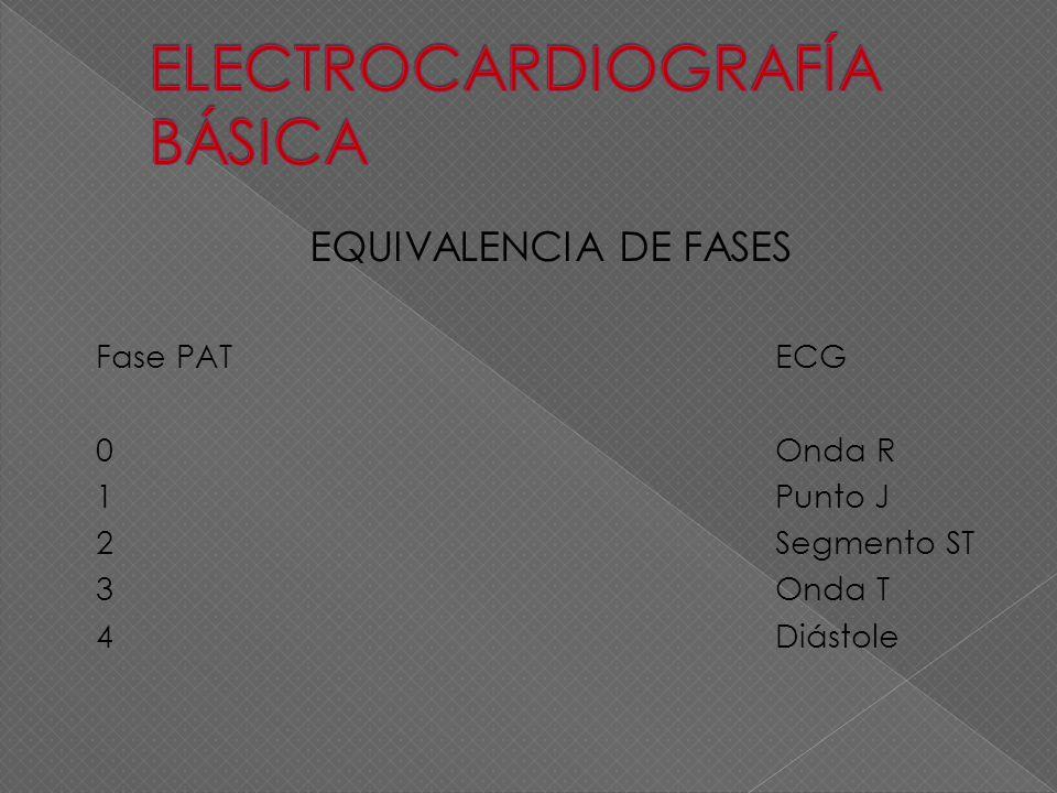 EQUIVALENCIA DE FASES Fase PATECG 0Onda R 1Punto J 2Segmento ST 3Onda T 4Diástole
