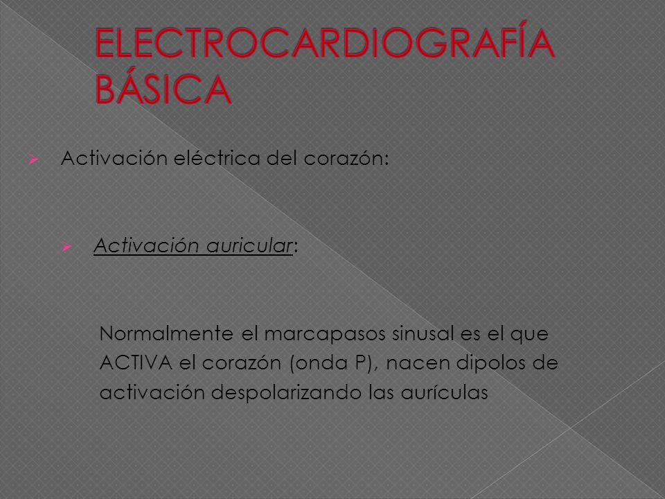 Activación eléctrica del corazón: Activación auricular: Normalmente el marcapasos sinusal es el que ACTIVA el corazón (onda P), nacen dipolos de activ