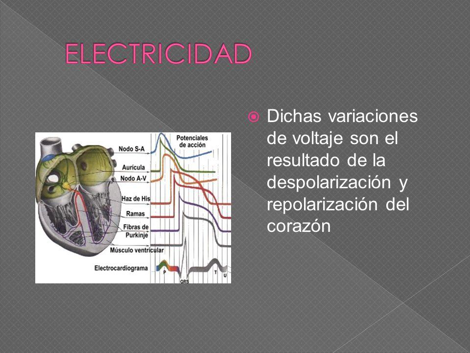 Dichas variaciones de voltaje son el resultado de la despolarización y repolarización del corazón
