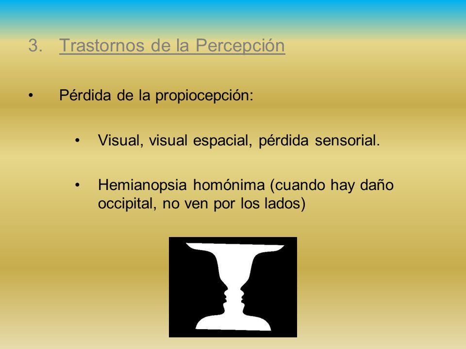 3.Trastornos de la Percepción Pérdida de la propiocepción: Visual, visual espacial, pérdida sensorial. Hemianopsia homónima (cuando hay daño occipital